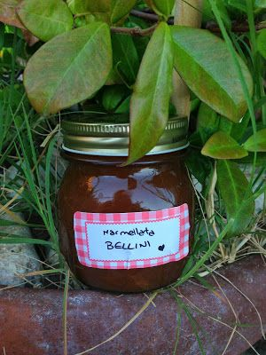Marmellata Bellini (Bellini Jam) | Food, Glorious Food - Salads, Star ...
