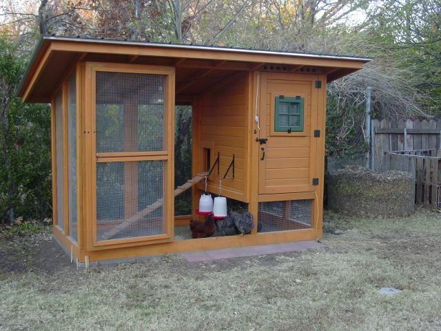 Backyard Chickens Coop : Wichita Cabin Coop  BackYard Chickens  Backyard  Pinterest