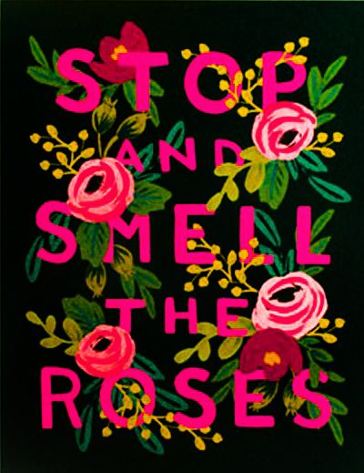 Stop & smell the roses. #quote