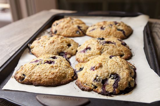Blueberry, Juniper, And Cornmeal Drop Scones Recipes — Dishmaps