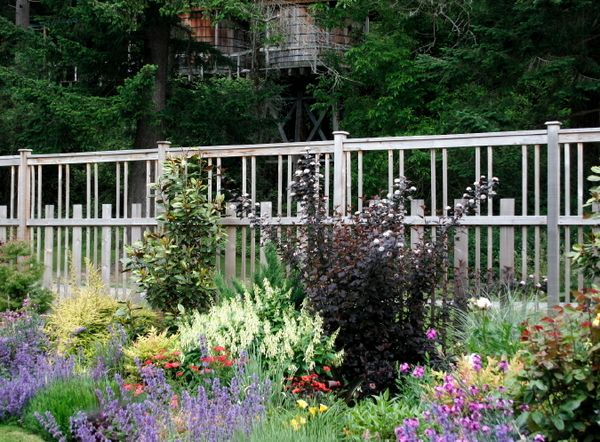 beautiful deer height garden fence garden pinterest