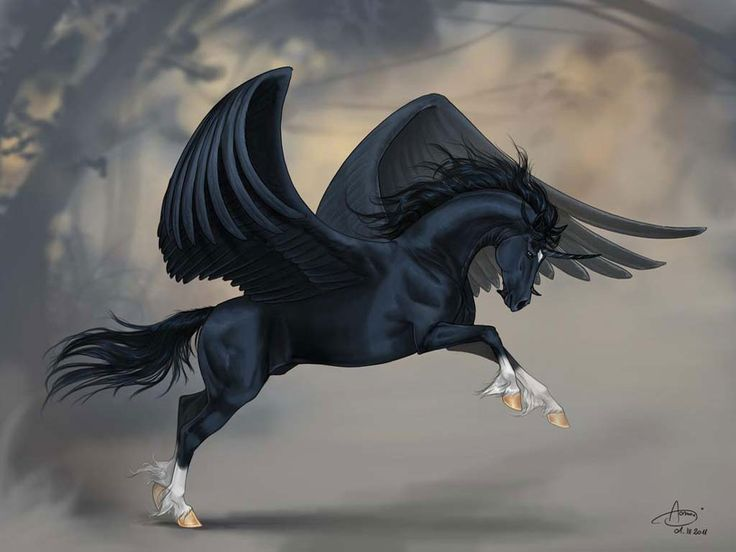 winged black Unicorn fantasy art | Pegasus | Pinterest