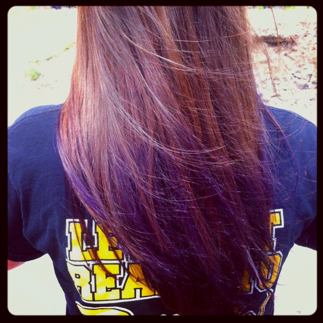 purple dip dyed hair on brown hair wwwimgkidcom the