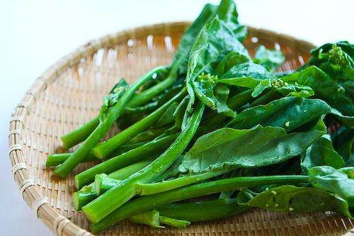 Chinese Broccoli (Gai Lan) with Oyster Sauce - to help me learn how to ...