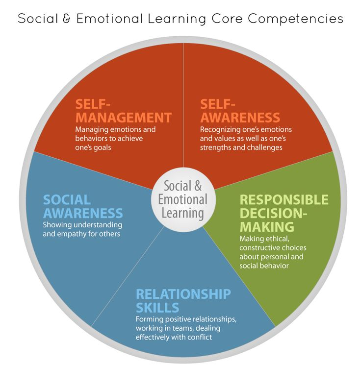 Social Emotional Learning - Core Competencies