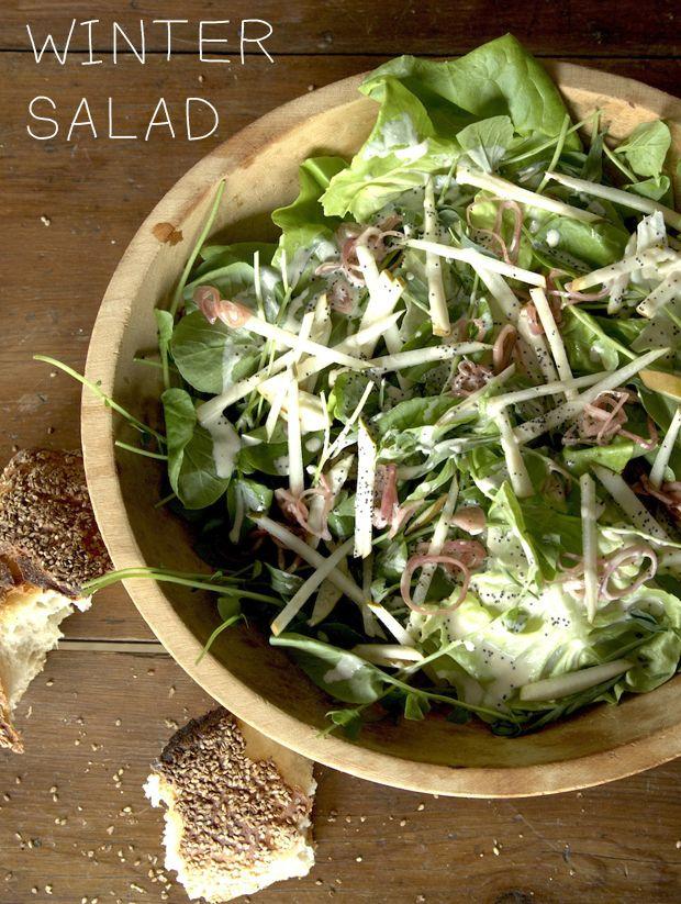 Winter Salad/ Poppy seeds Boston lettuce Watercress Bosc pear Shallots ...