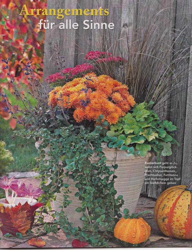 Herbstarangement   Container Gardening   Pinterest