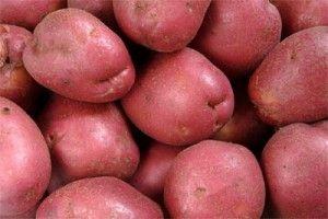 Hot German Roasted Potato Salad | Kansas City Mamas | Pinterest