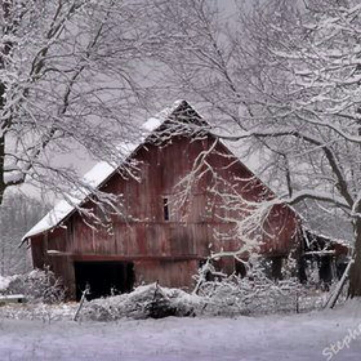 Just beautiful.....   WINTER is coming....   Pinterest
