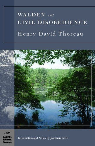 henry david thoreau walden essay