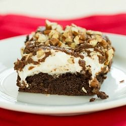 Mississippi Mud Snapping Turtle Brownies Recipes — Dishmaps