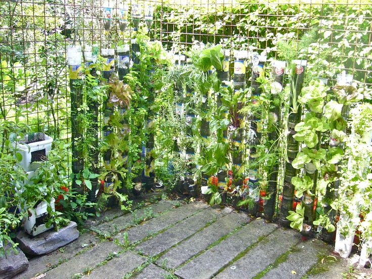 Vertical Garden Urban Gardens Pinterest