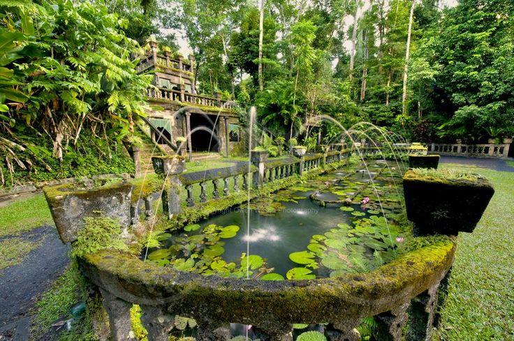 Innisfail Australia  City new picture : Paronella Park near Innisfail QLD   This is Australia...   Pinterest