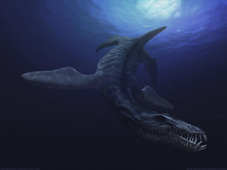 Six Of The Most Bizarre Dinosaurs