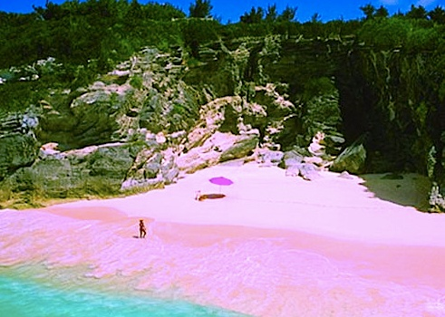 Pink sand beaches bahamas beachy pinterest for Bahamas pink sand beaches