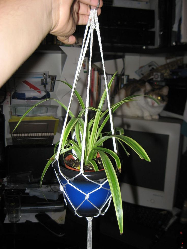 Want to make one too?? SUPPLIES: Plant Pot; Acrylic Paint (I used a little bottle of outdoor paint) Jute Rope; Screw Hook (or other piece of hardware for attaching to ceiling/wall) Scotch Tape; Potting soil and plant. First of all, painting your pot is completely optional.