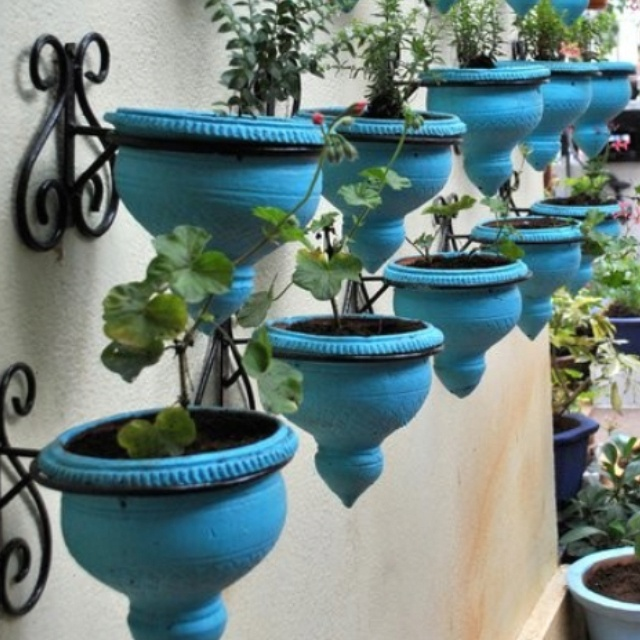 Like the idea and color for back patio.