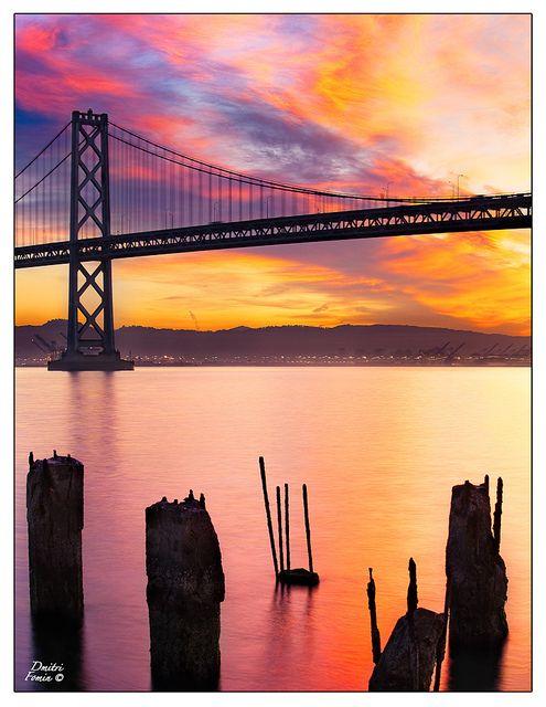 Awakening, San Francisco Bay