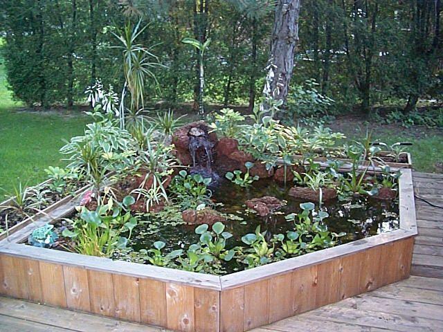 Porch Ponds  Outdoor Deck or Patio Pond  PrivacyLandscape  Pintere
