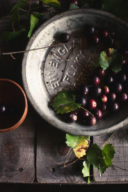 muscadine syrup on honey & jam