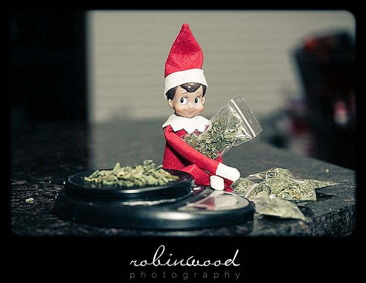 Drug Dealer Elf Adult Prank Elf On The Shelf Ideas