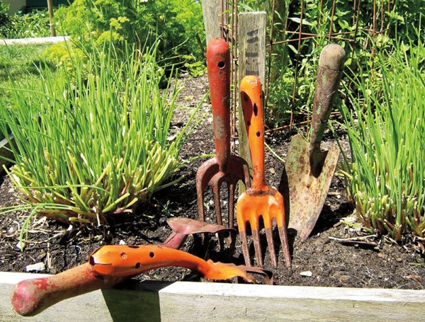 Pin by Gardening Canuck on Garden ideas | Pinterest