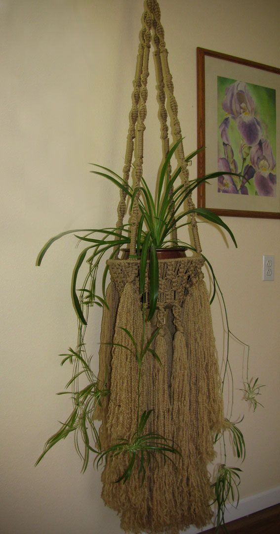 Macrame Plant hanger for indoor/outdoor by LudsHandicrafts on Etsy, $ ...