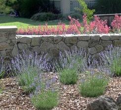 Gartenideen Wall : Stone garden wall. Gartenideen Pinterest