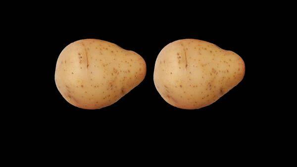 Recipe - Simple Mashed Potatoes - NYTimes.com Awesome mashed potatoes.