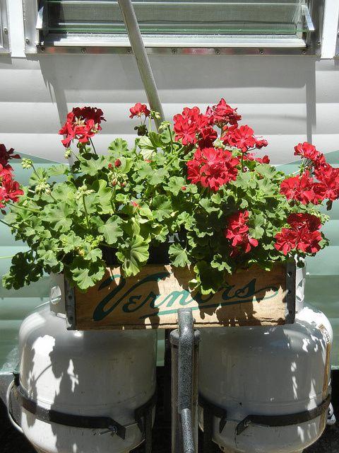 Propane tank flower box? Yes!