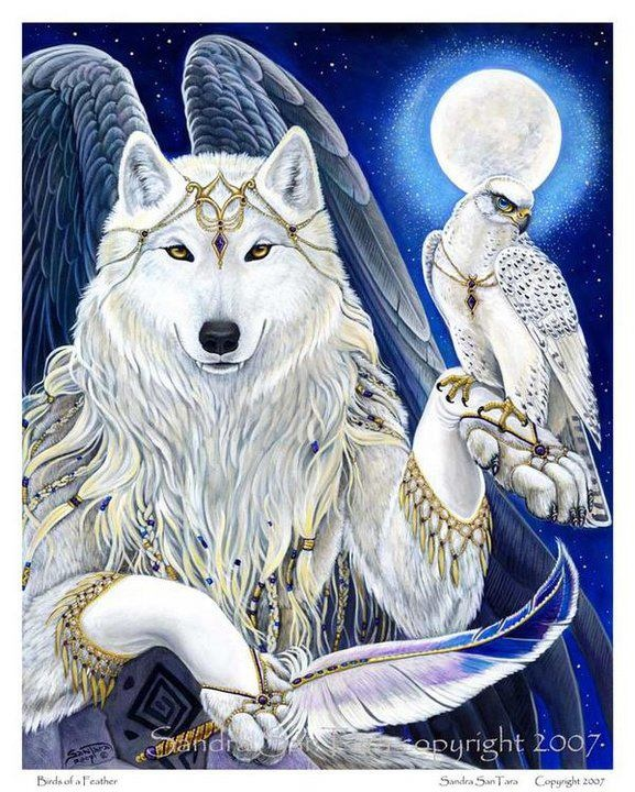 Angel Wolf | Wolves and Native American Indians | Pinterest