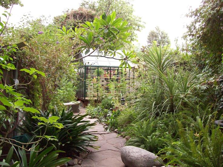 Backyard Greenhouse Ideas : Small backyard greenhouse  Garden Ideas  Pinterest