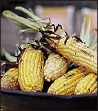 Smoky Grilled Corn with Parmesan Butter | Cook 5 mins on oiled grill ...
