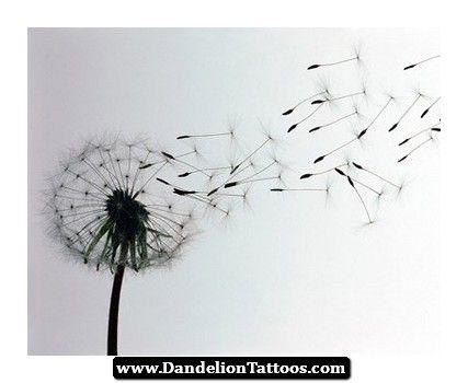 tattoo of dandelion blowing 11 http dandeliontattoos. Black Bedroom Furniture Sets. Home Design Ideas