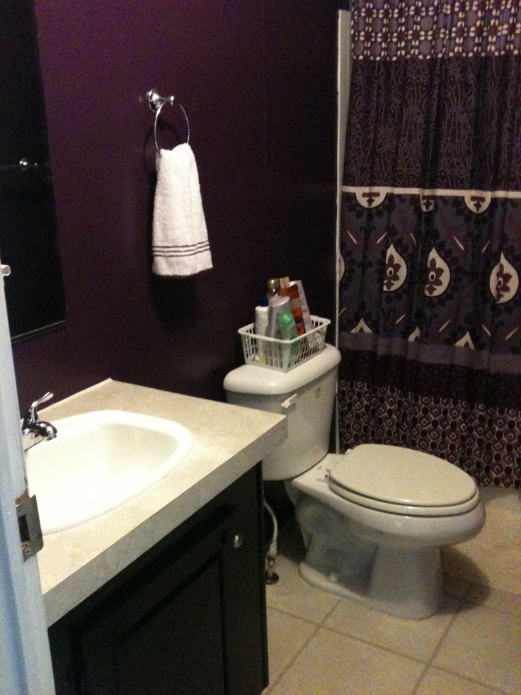 Purple Bathroom Love The Wall Color Decorating Ideas