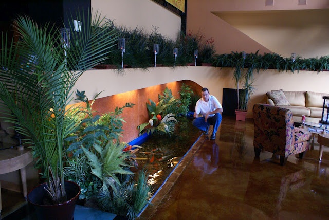 Pin by liz matar on dream home for Indoor koi fish pond