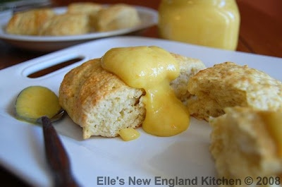 Coconut Lime Scones w/Mango Orange Curd   Sweets for the Sweet   Pint ...