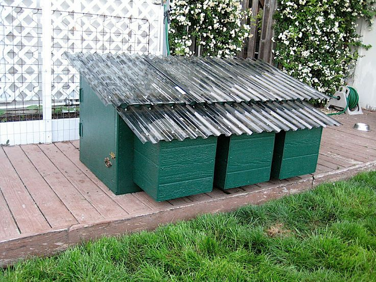 Simple chicken coop homesteading pinterest for Basic chicken coop