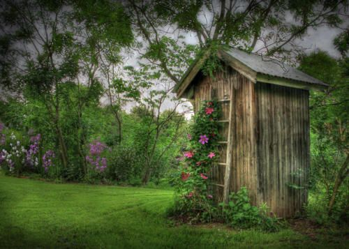 Tiny ~!~  sweet garden shed