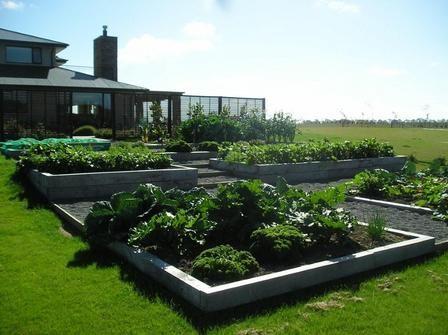 Terraced vegetable garden the kitchen garden pinterest for Terrace vegetable garden