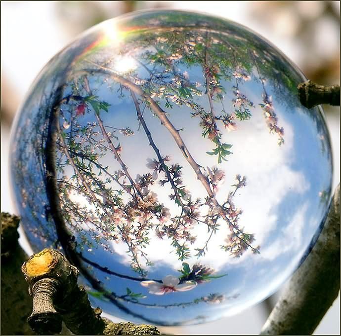 Crystal gazing gazing balls all beautiful pinterest for Miroir concave