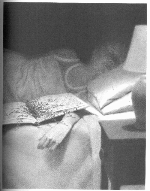 mysteries of harris burdick pdf