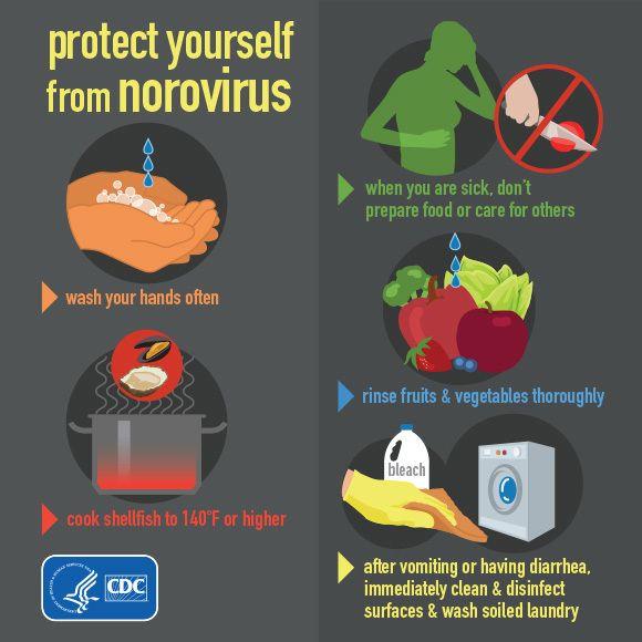 norovirus-outbreak
