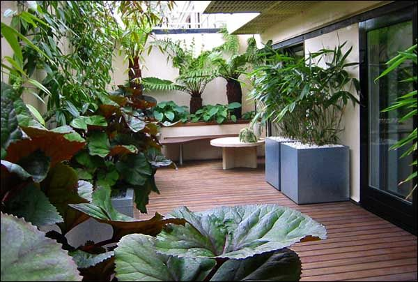 Creative small backyard landscaping ideas