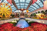 The Conservatory at The Bellagio, Las Vegas,NV