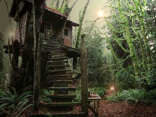 Dream tree house favorite places spaces pinterest - The hideout in the woods an artists dream ...
