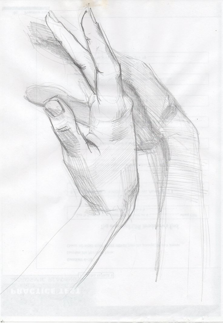 hands Maria Degtyareva, pencil 2013