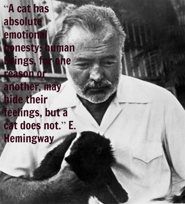 "analysis on in another country by ernest hemingway This one-page guide includes a plot summary and brief analysis of in another country by ernest hemingway ""in another country"" is a short in another country."