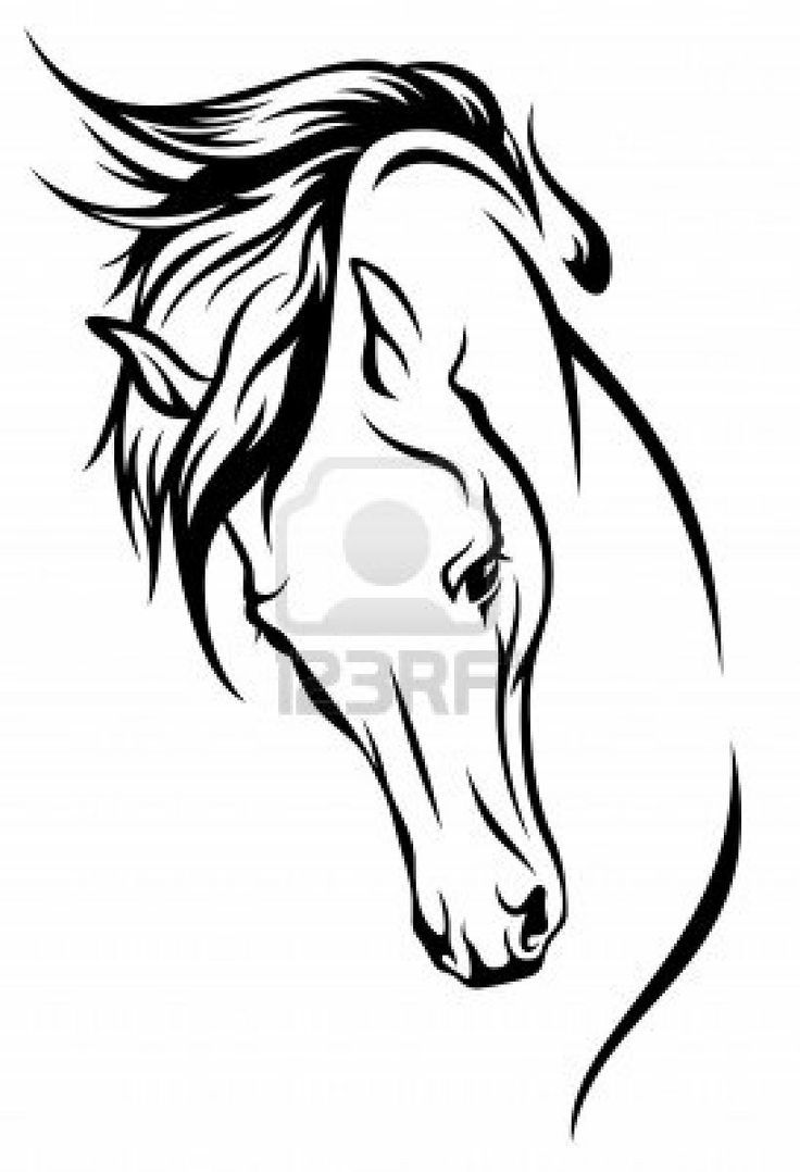 Horse Line Drawing Tattoo : Horse outline tattoo ideas tats pinterest