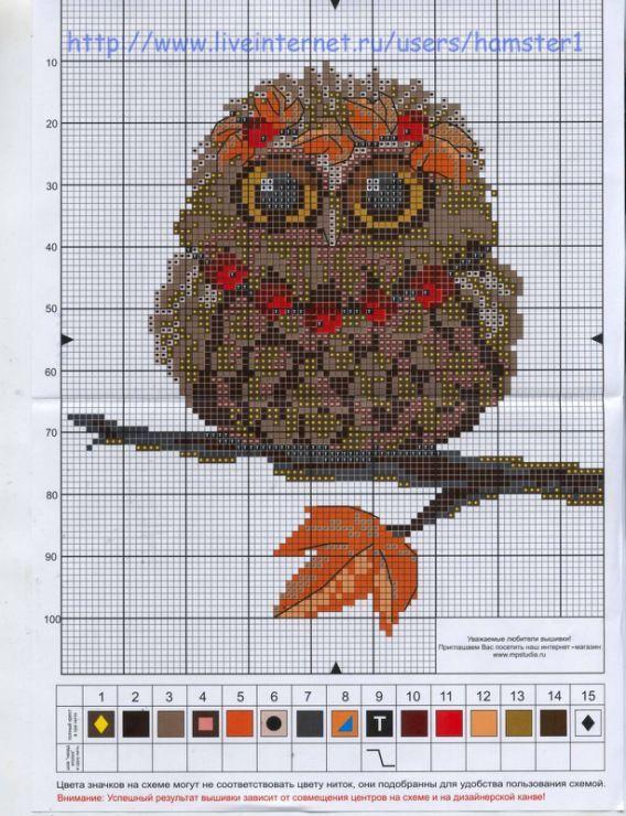 Вышивка крестиком совы схемы 36